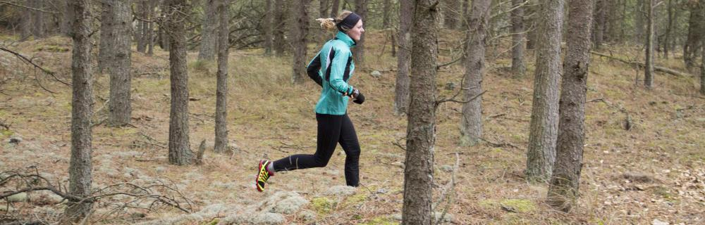 O-løb i skovene ved Hasle Bakker