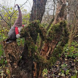 Nisse der sidder i et træ
