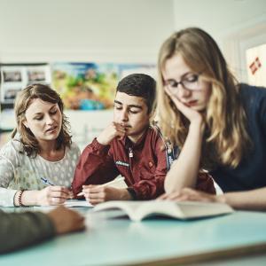 Målrettet undervisning til elever og deres lærere